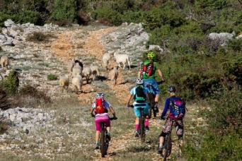 Hotel & Bike Tour: Mountain Bike Muggia to Pula 7nts (Saturdays)