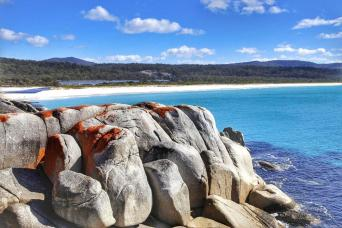 Gray Line Bay of Fires