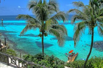 Gray Line Royal Garrafon Park At Isla Mujeres - VIP Pass