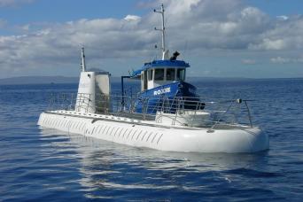 Gray Line Atlantis Submarine Ride From Cozumel