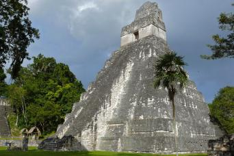 Gray Line Tikal Tour From Flores With Lunch