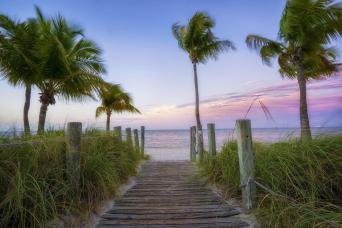 Gray Line Key West Day Trip & Snorkeling Adventure