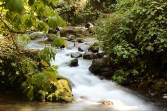 Gray Line From San Jose - Combo Tour (Poas Volcano, Doka Estate & La Paz Waterfall Gardens)