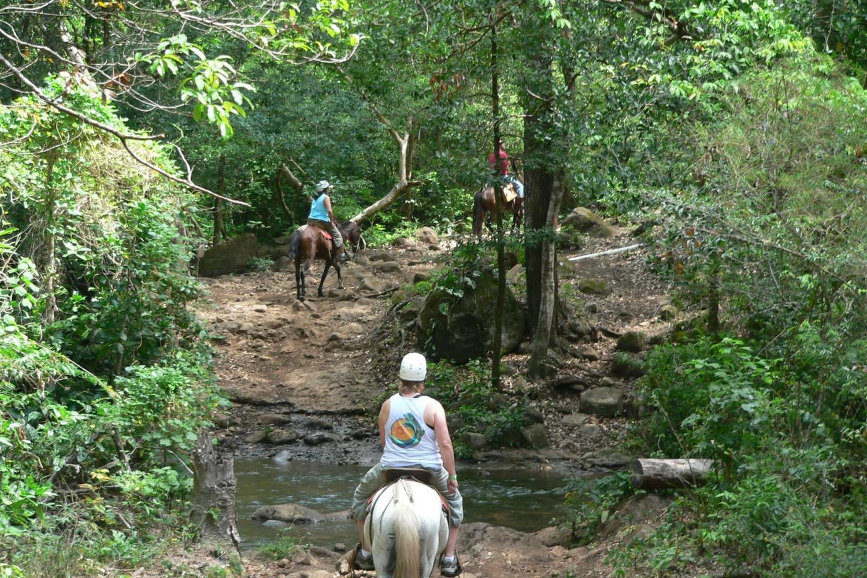 From Manuel Antonio - Waterfalls Horseback Riding
