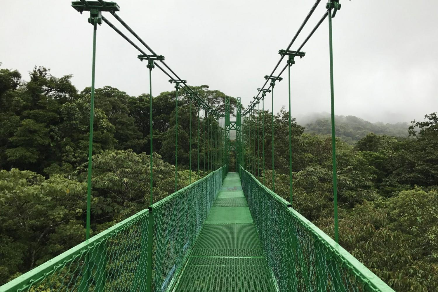 From Monteverde - Adventure Canopy & Hanging Bridges