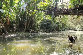 Gray Line From San Jose - Horseback Riding and Boat in the Rainforest