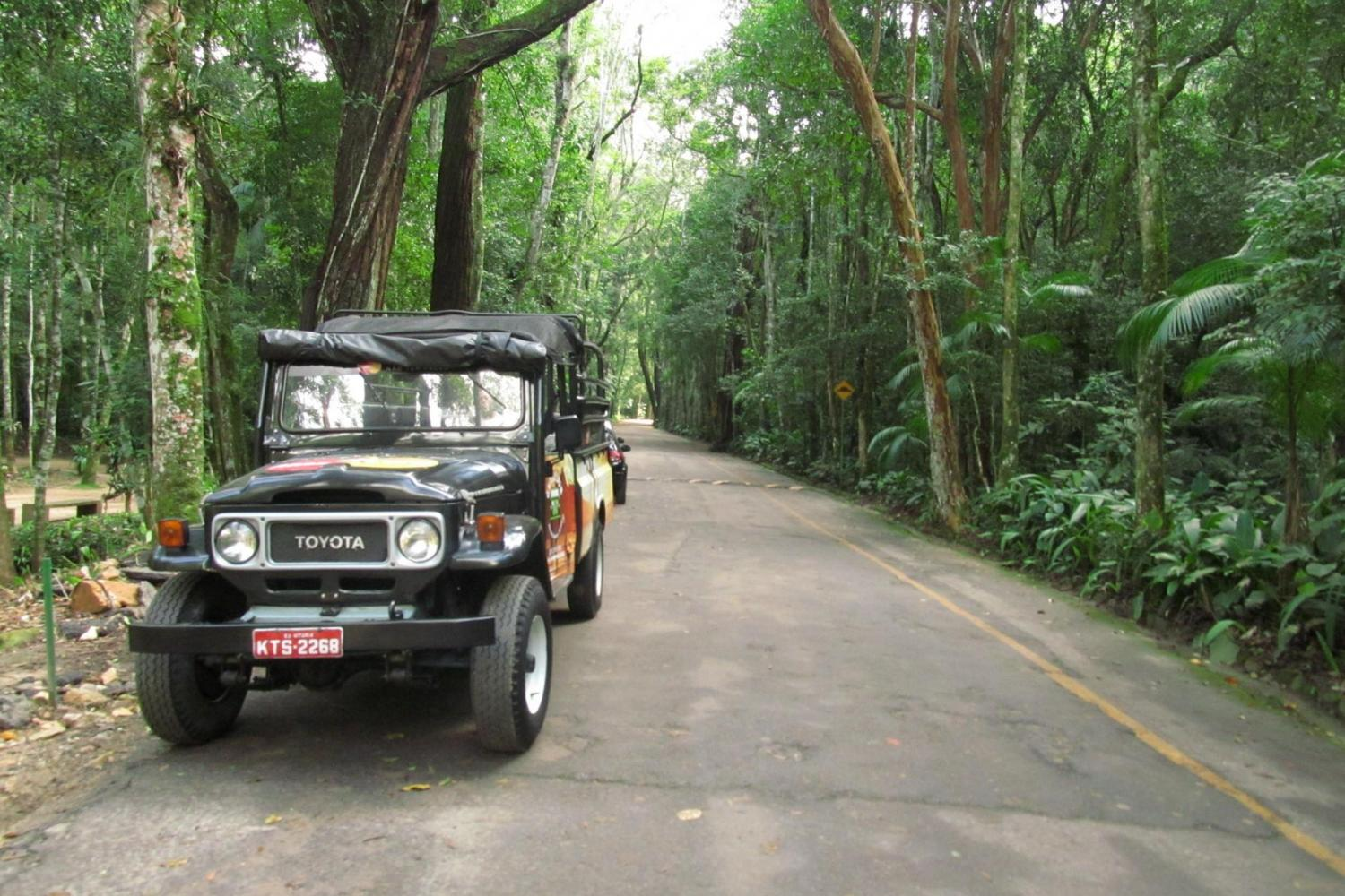 Experience nature on a jeep tour of the Tijuca Rainforest