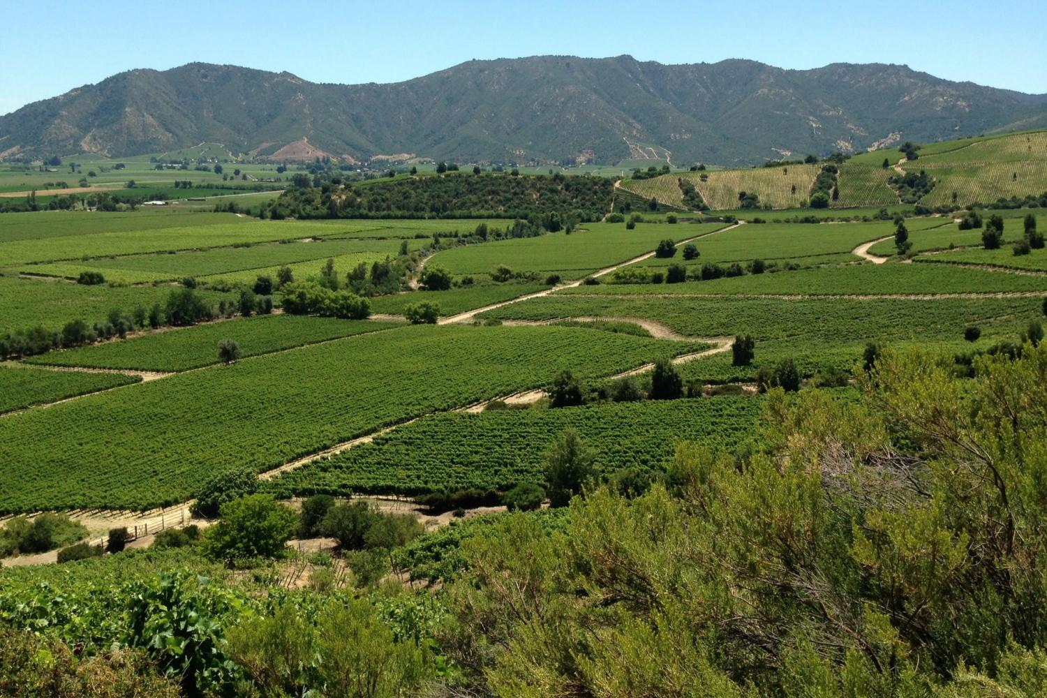 Panoramic View of Colchagua Valley