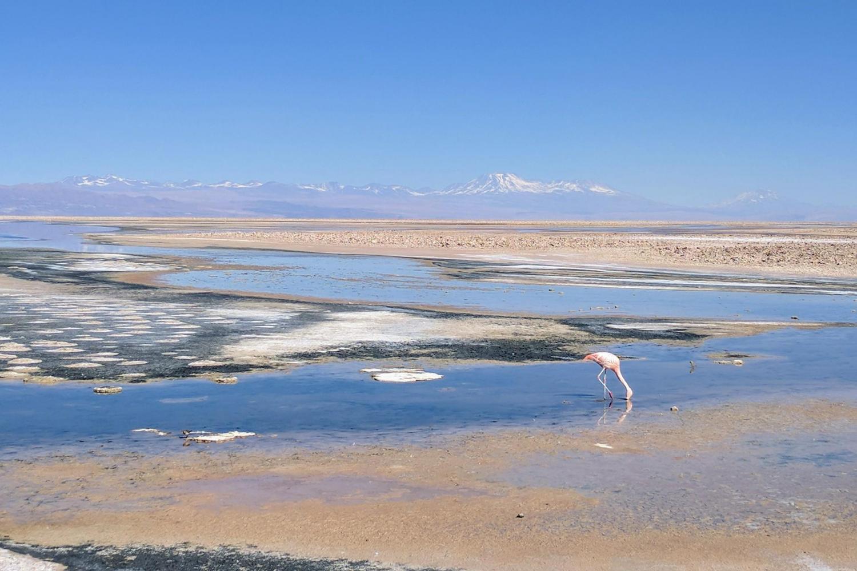 Atacama Salt Flat & Toconao from San Pedro de Atacama