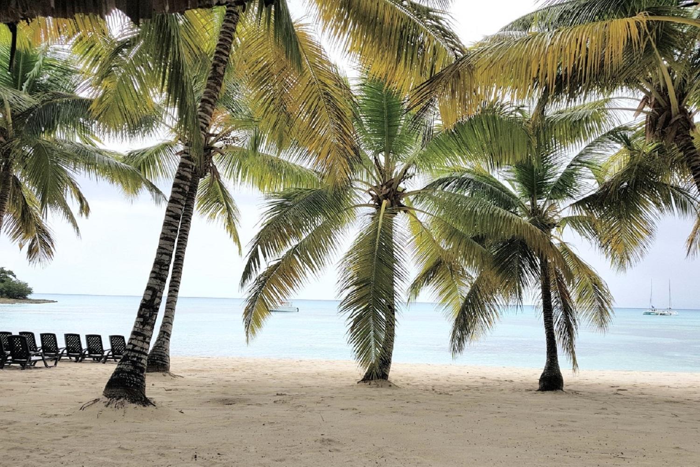 Saona Island tour from Santo Domingo