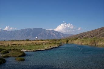 Gray Line Cerro Mesa & Garrapatero Excursion