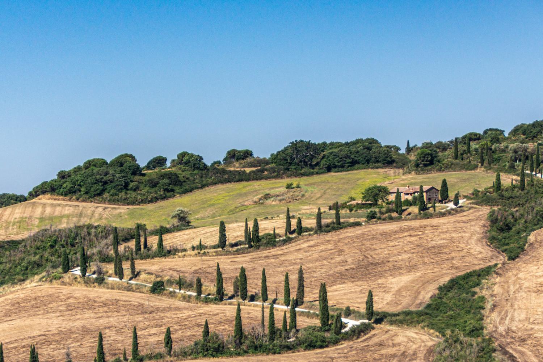 The Essence of Tuscany - Chianti Classico, Montalcino and Montepulciano