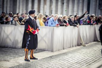 Gray Line Papal Audience With Pope Francis
