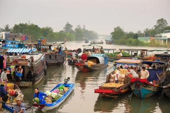 Gray Line Mekong Delta Tour - 1 Day
