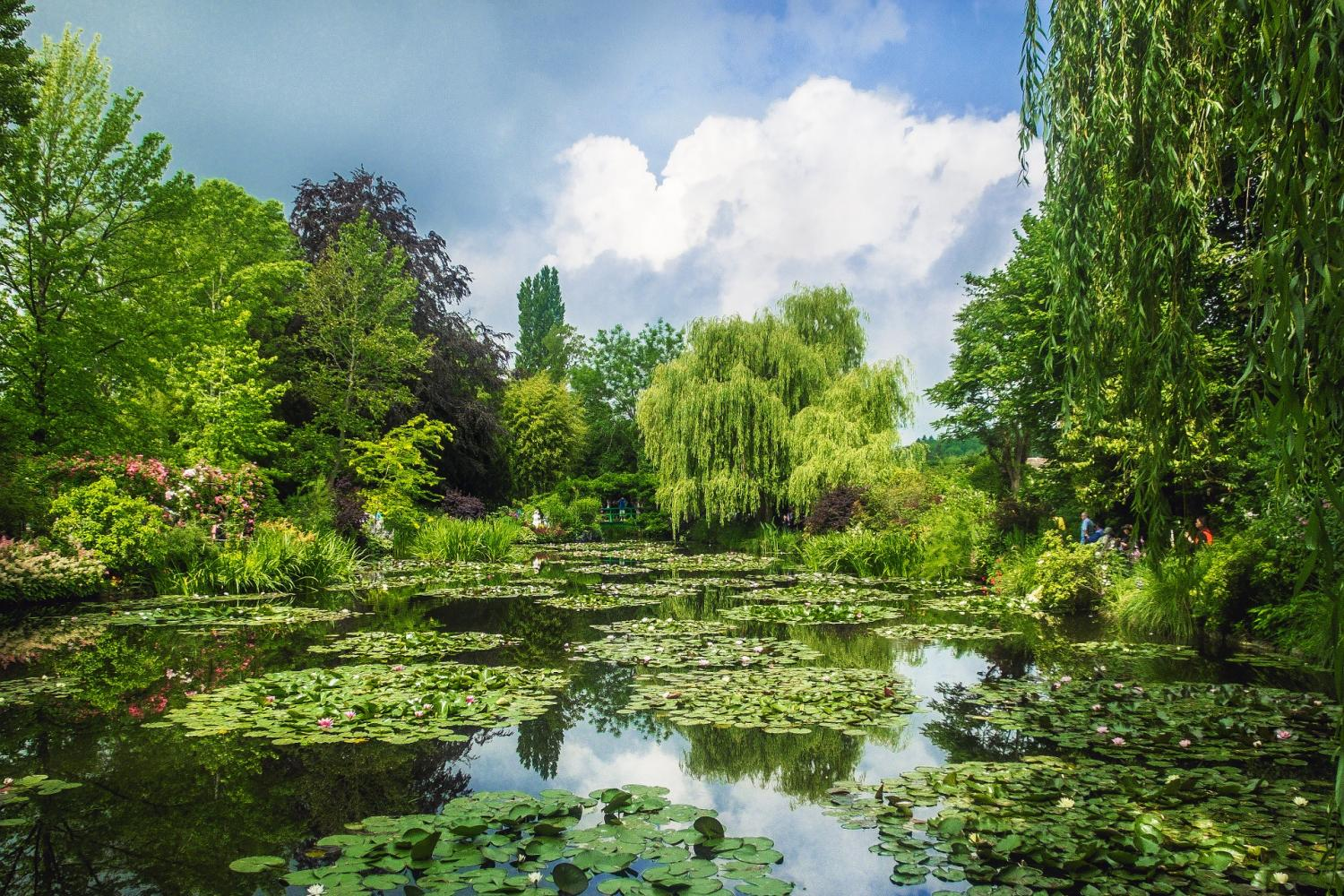 Venture through the mystical gardens that inspired Monet