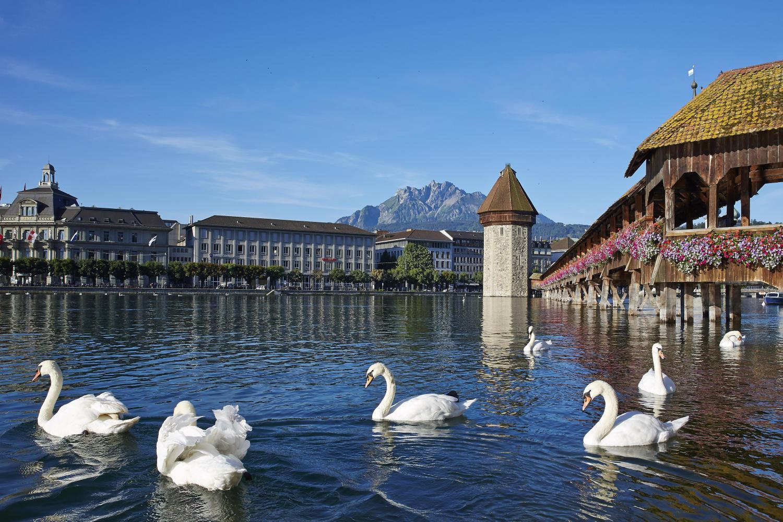 Day Trip To Lucerne From Zurich