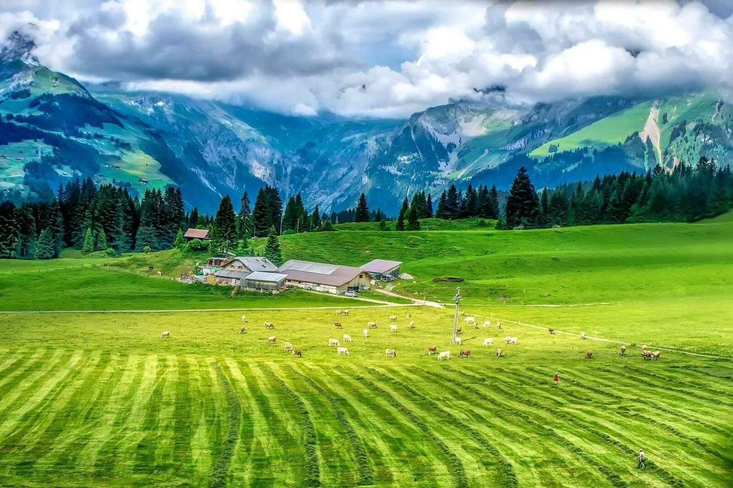 6-Days Swiss Grand Alpine Tour From Lucerne