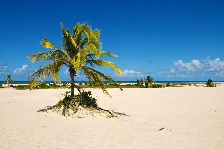 Explore the waters surrounding Mangue Seco