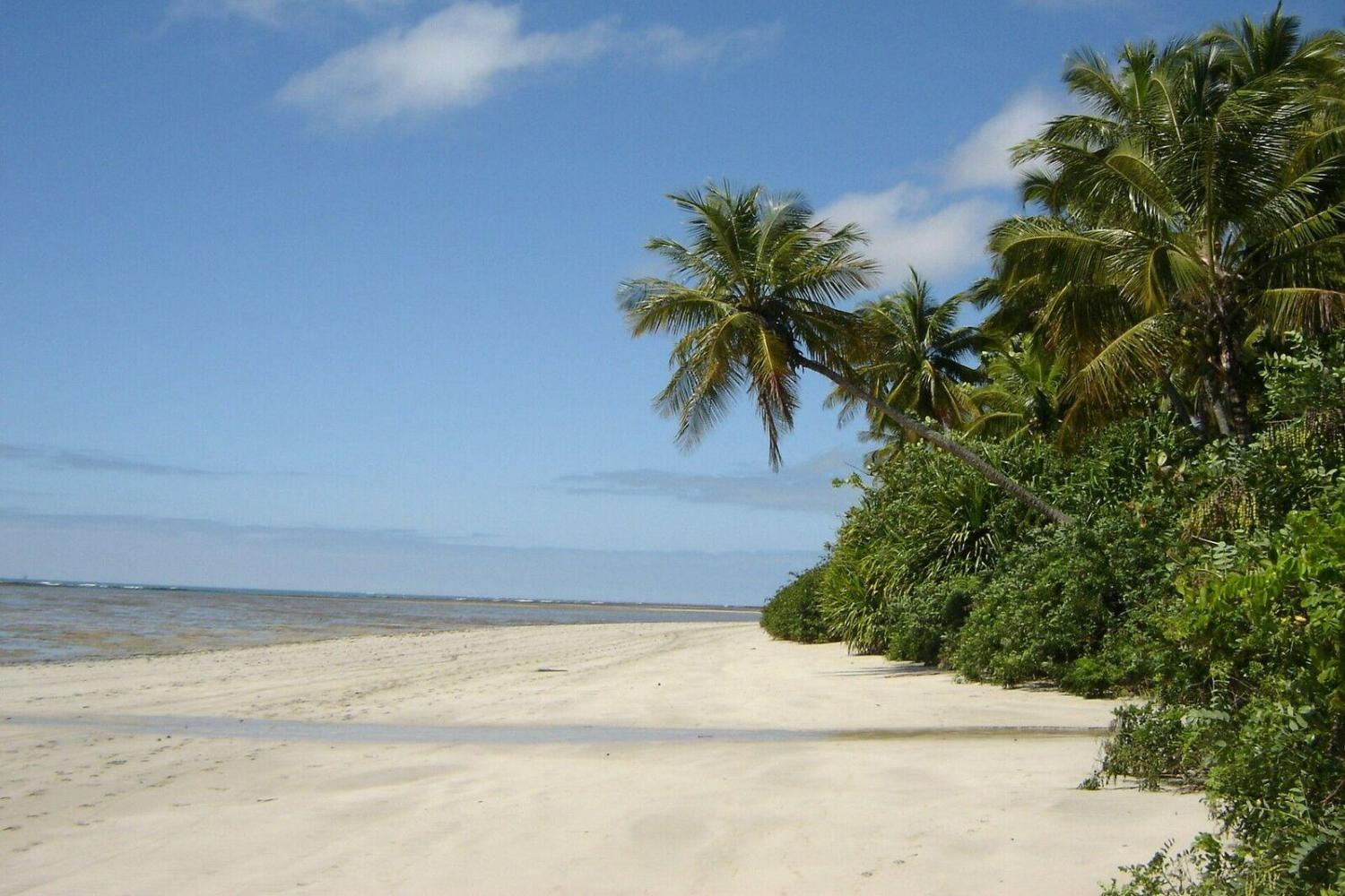 Enjoy rest and relaxation on the beaches of Brazil