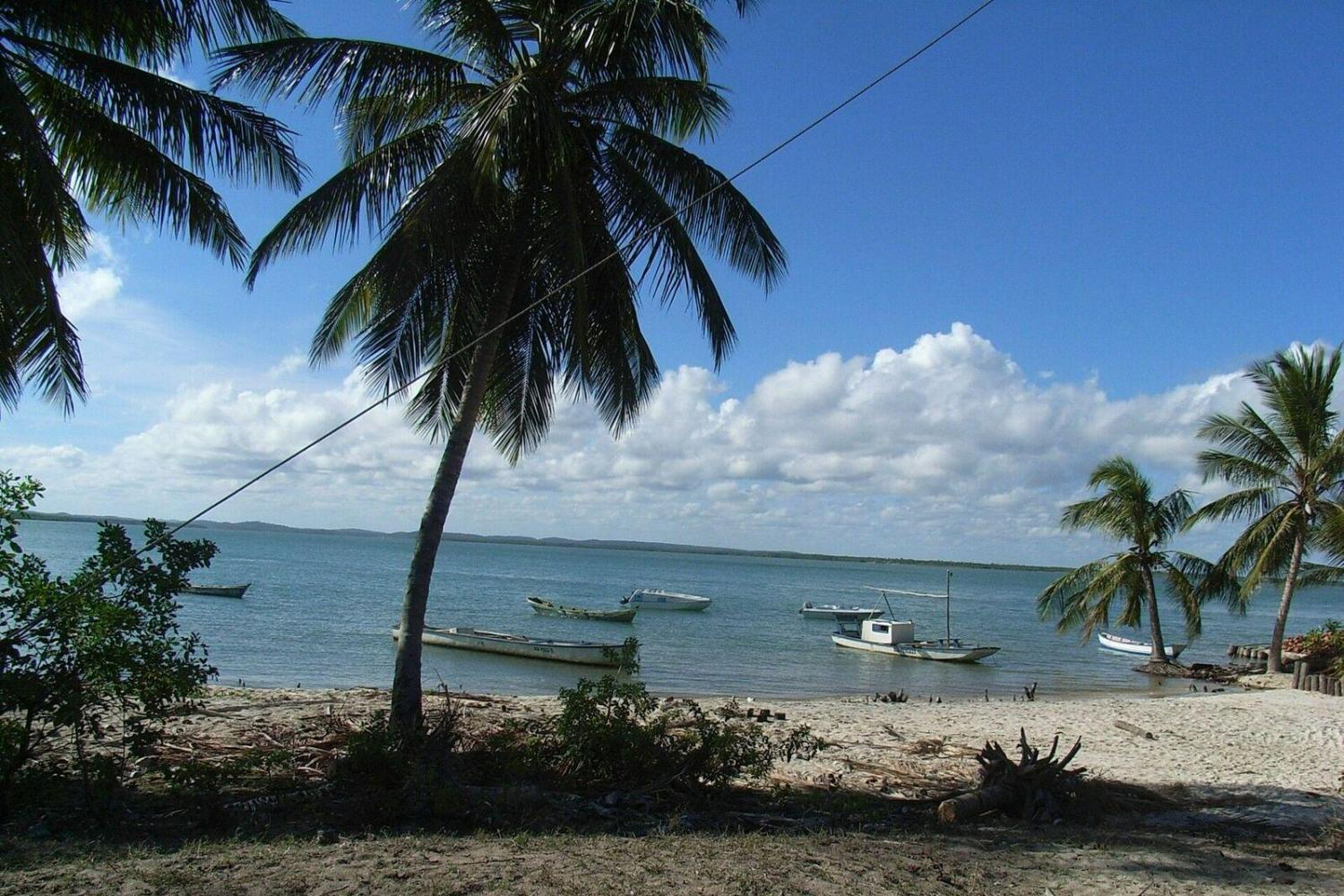 Visit Maracajau Beach for a day on the water