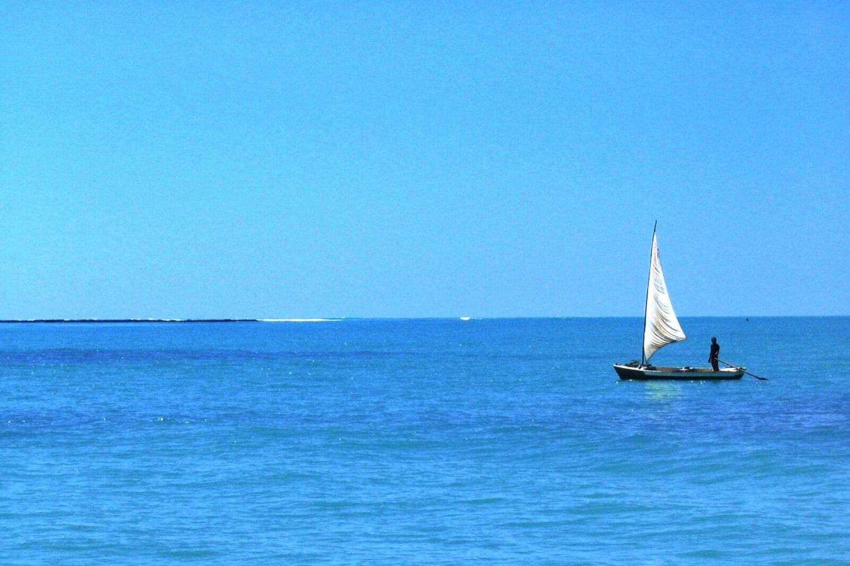 Maragogi Beach Gales Reef  - Group Tour Spanish and Portuguese