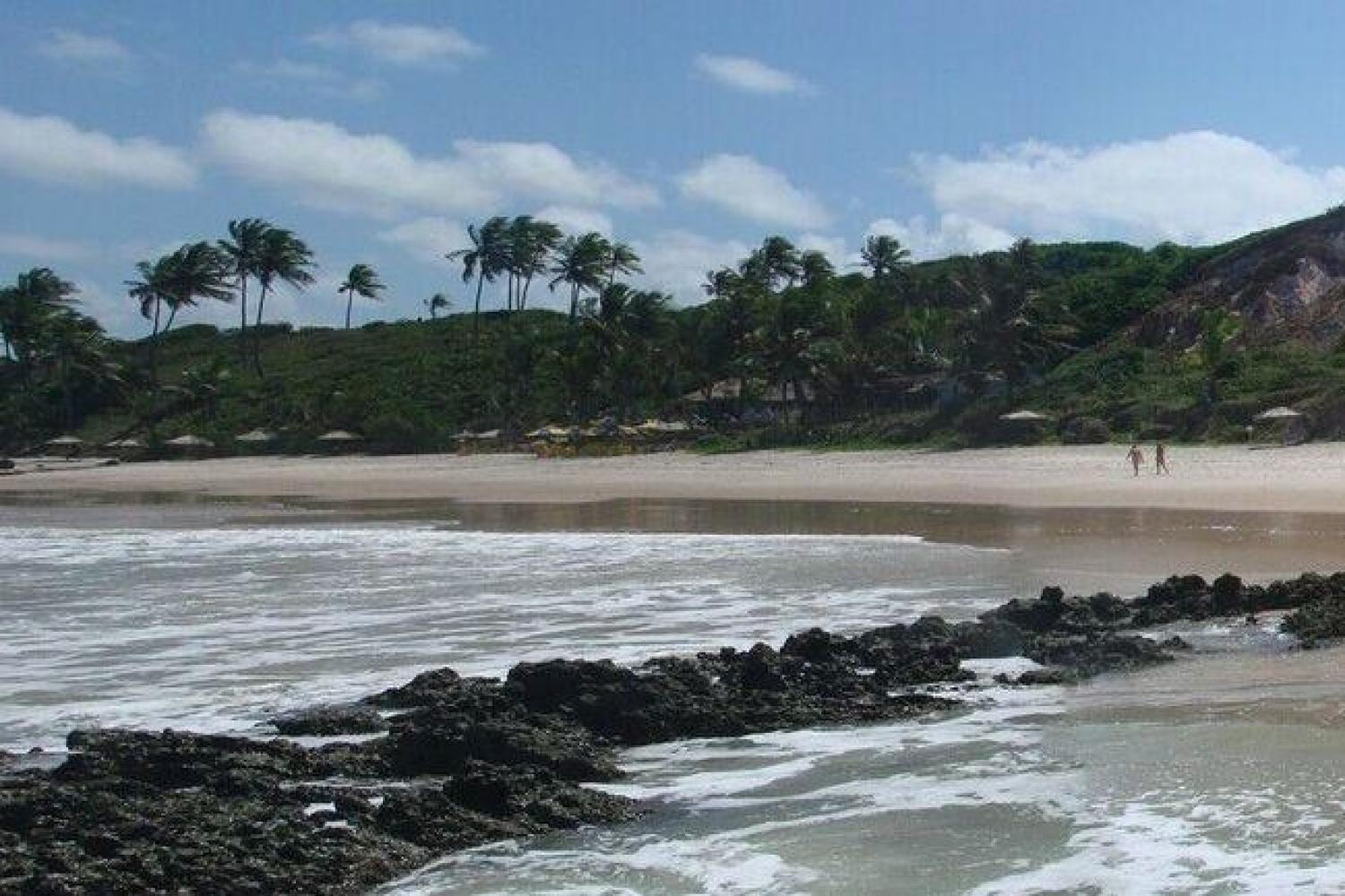 Southern Coast Beaches and Tambaba - Private English Guide