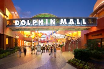 Gray Line Dolphin Mall Shuttle - South Beach Loop