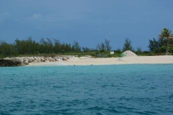 Gray Line Day Trip to Bimini, Bahamas with transportation - Economy Class