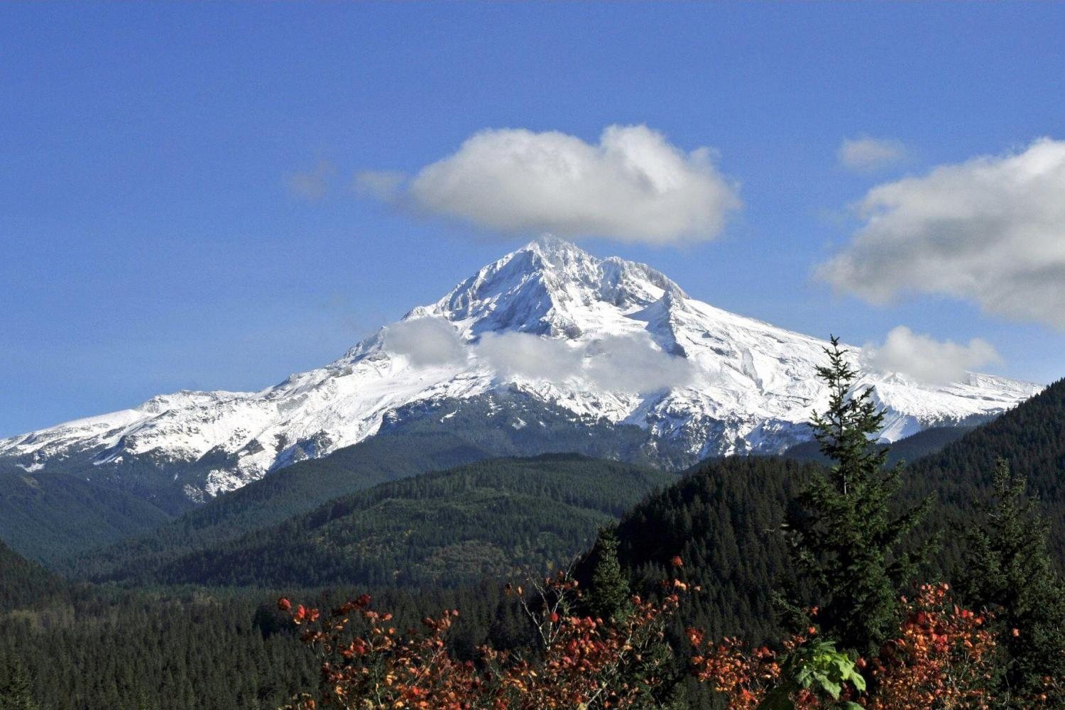 Mount Hood and Hood River Valley Tour