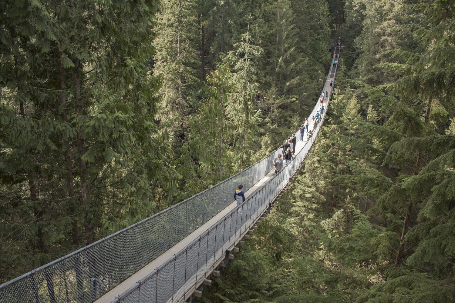 Grouse Mountain & Capilano Suspension Bridge Park From Vancouver