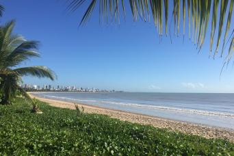 Gray Line Recife and Olinda City Tour - Private English Guide