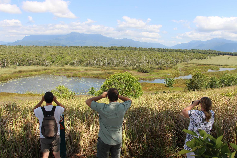 Wooroonooran Safaris Day Tour
