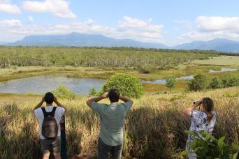 Gray Line Wooroonooran Safaris Day Tour