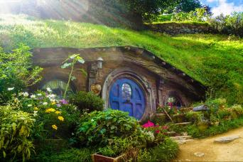 Gray Line Gray Line Hobbiton & Waitomo Experience With Lunch From Auckland