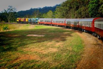 Gray Line Deluxe Tour Of Kuranda, The Village In The Rainforest