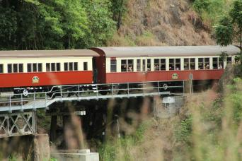 Gray Line Skyrail & Train Kuranda Tour