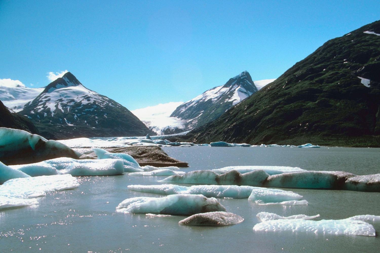 Portage Glacier Cruise Only (Self Drive)