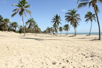 Gray Line Cumbuco Beach & Sand Dunes with City Tour