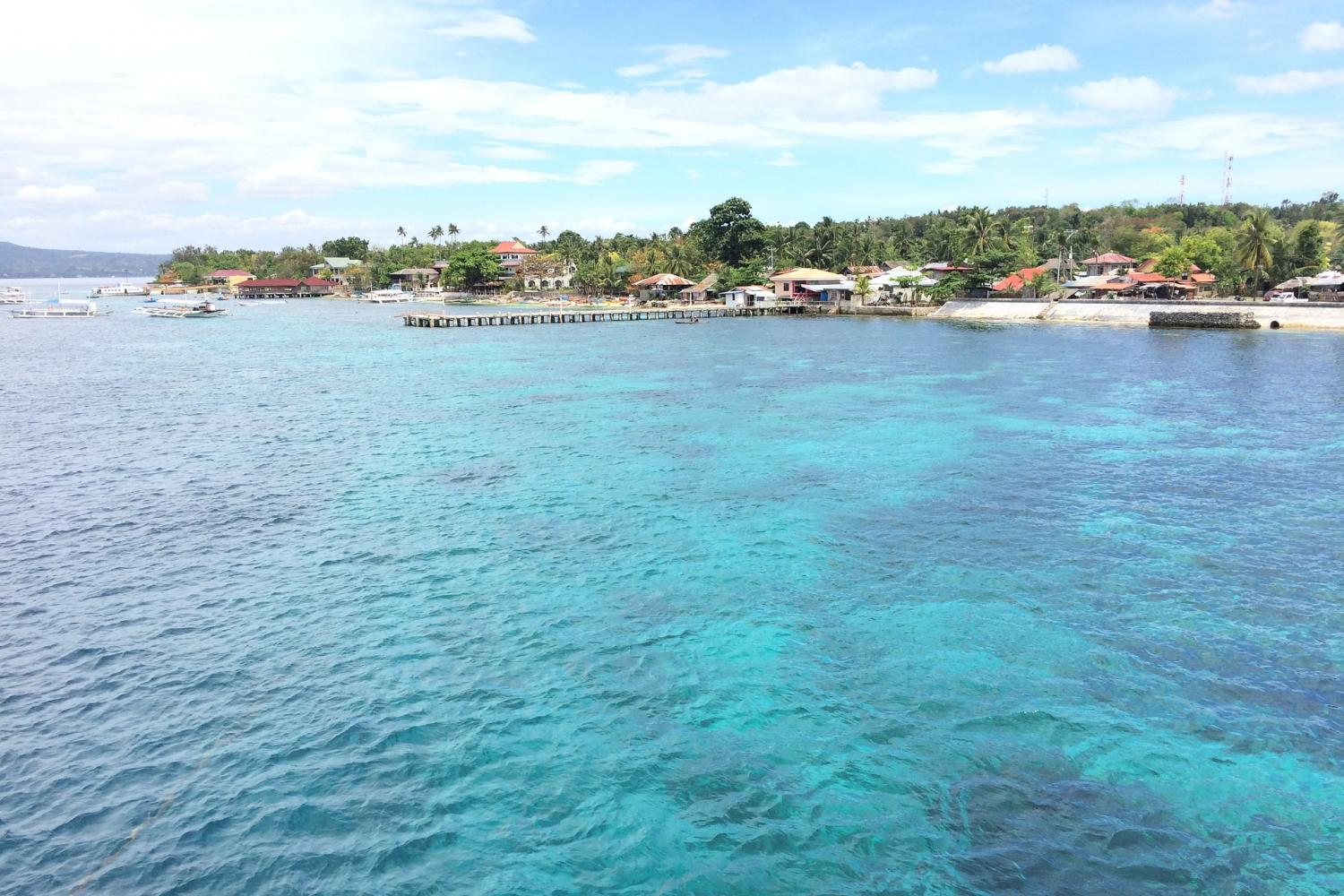 Cebu Oslob Swimming with the Whale Shark Vacation Package (3days/2nights Stay)