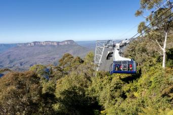 Gray Line Blue Mountains Express Afternoon Departure