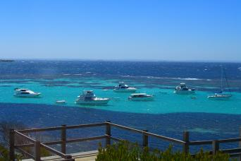 Gray Line Rottnest Island Flexi- From Rottnest