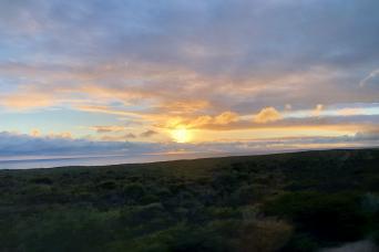 Gray Line Pinnacles Desert Sunset and Stargazing