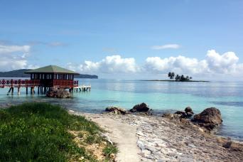 Samaná Experiences Tour from Punta Cana