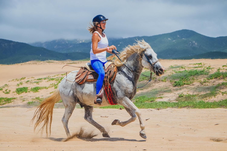 Los Cabos Horseback Ride 2 Hour Tour