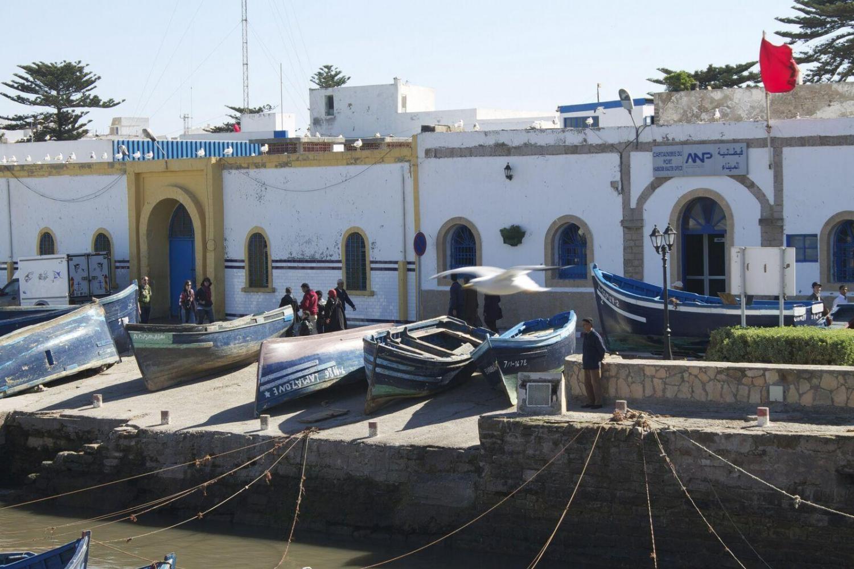 Explore the fishing town of Essaouira