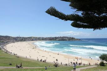 Gray Line Sydney City, Harbor & Bondi Beach Combo Tour