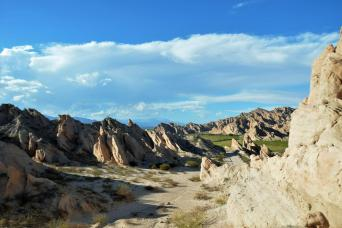 Gray Line Tour to Cachi through Los Cardones National Park