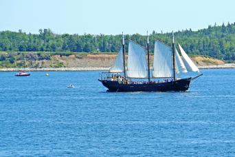 Gray Line Tall Ship Silva