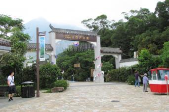 360 Lantau Explorer Tour