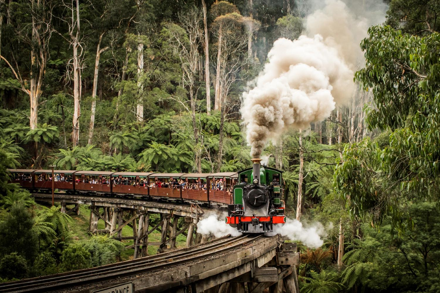 Penguin Parade Tour & Puffing Billy Train Ride From Melbourne